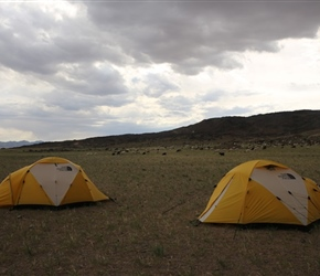 Our site for the night in the Gobi Desert