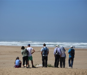 Group on beach