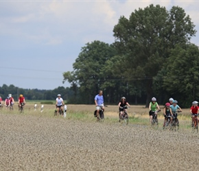 Group through corn fields