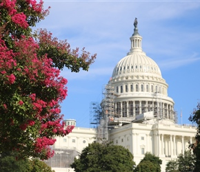 The United States Capitol, often called the Capitol Building, is the home of the United States Congress and the seat of the legislative branch of the U.S. federal government.
