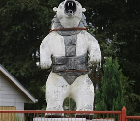 Polar Bear!! - I seem drawn to taking pictures of street furniture somewhat out of place