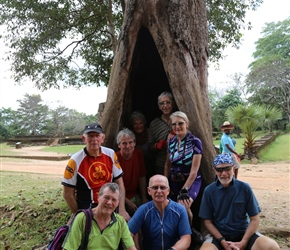 How many can we get in that tree? at Polonnaruwa