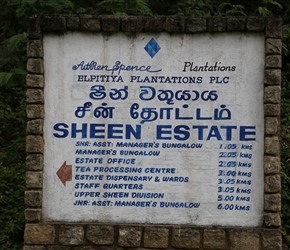 Sign pointing to various parts of the tea plantations
