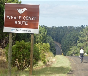 Shery passes the Whale Coast sign