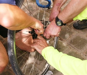 Trying to fix the freewheel