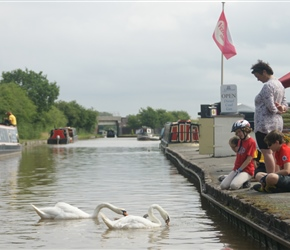 Catherine and Christopher feed the swans at the marina near Nantwich