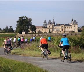 Towards Chateau near Bordeaux